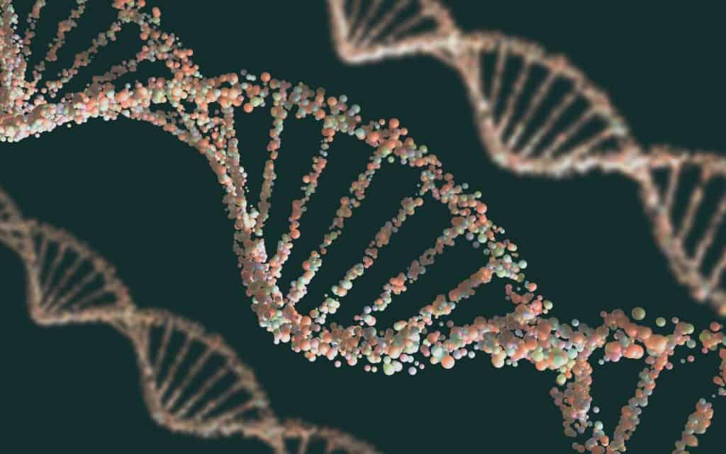 reserach DNA Structure