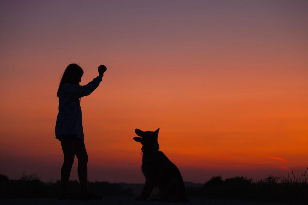 silhouette with dog and woman