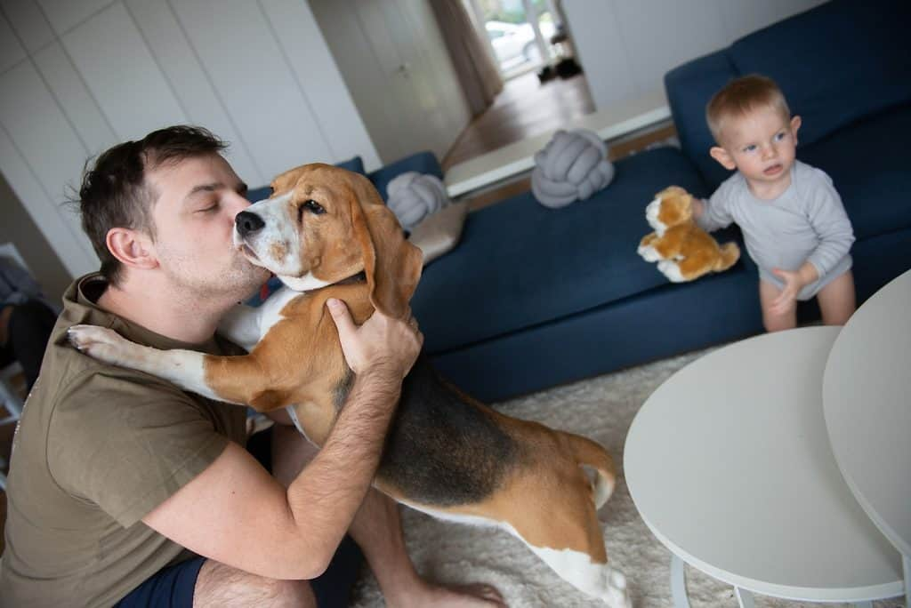 man plafylly kissing his dog